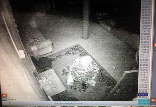 Một hình ảnh cho thấy dáng người đứng ở cửa trước còn hình ảnh khác thu được một ngày sau đó, cho thấy dáng người tương tự ở gần ghế sofa.