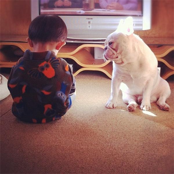 Lúc này Muu đã có mặt trong gia đình, thế nhưng chú chó không hề đến gần Tasuku vì muốn nhường mọi tình thương của cậu chủ nhỏcho người anh mắc bệnh của mình.