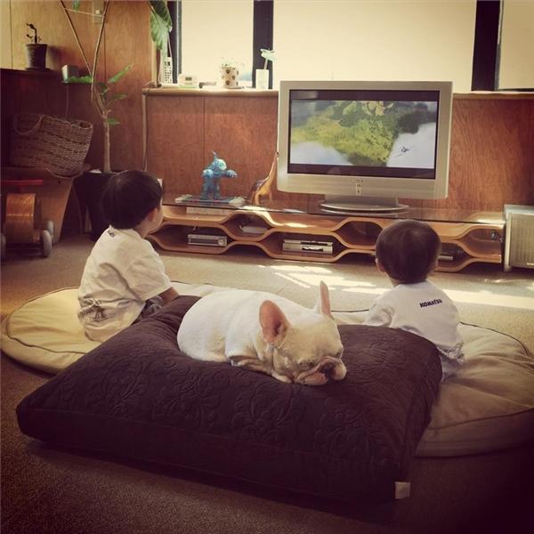 Ba anh em hầu như khá thân thiết với nhau, cùng chơi chung, ngủ chung, và không hề tranh giành đồ chơi hay gây lộn với nhau.