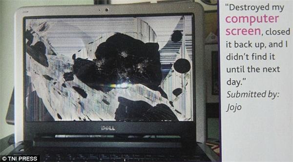 Máy tính bạn mất tích cả ngày, và khi được tìm thấy nó đã thành ra thế này. Khỏi hỏi cũng biết thủ phạm là ai rồi. (Ảnh: Internet)