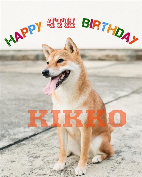 Kikko, sinh ngày 08/10/2012, là chị cả của nhà.