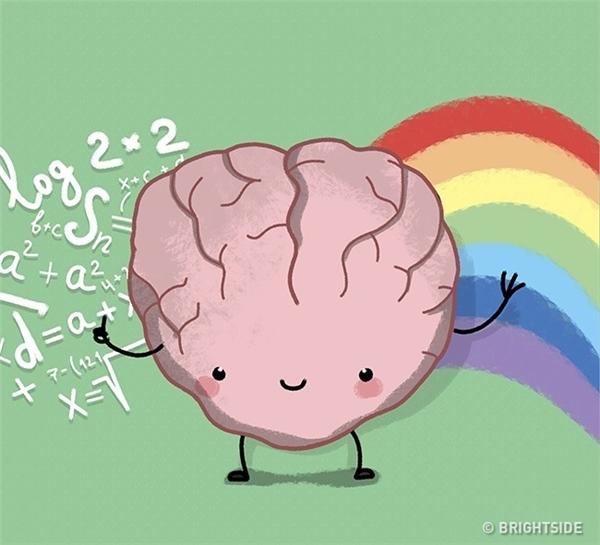 Không chỉ có bán cầu não trái mà cả bán cầu não phải cũng là nguồn của sự sáng tạo.
