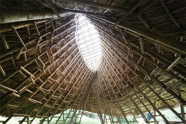 Phần mái bằng nhựa trong suốt giúp tận dụng tối đa nguồn ánh sáng.