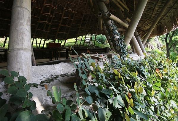 Bất ngờ ngôi nhà lá Việt Nam vinh dự nhận 2 giải kiến trúc quốc tế