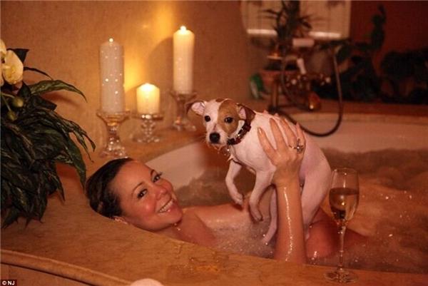 Tám con chó nhỏ của Mariah Carey có cuộc sống xa xỉ mà ai cũng phải mơ ước.