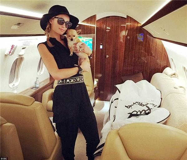 Prince được chủ chăm chút diện cho những bộ áo quần đặt may độc quyền của nhiều hãng thời trang nổi tiếng.