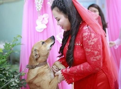 Trên hình là chú chó Ki và cô chủ trong lễ Vu Quy của cô vào năm ngoái. Khi biết cô chủ đi lấy chồng xa, chú chó thể hiện rõ sự buồn phiền trên gương mặt và khóc ướt cả hai mắt. (Ảnh:Huỳnh Lý Hùng)