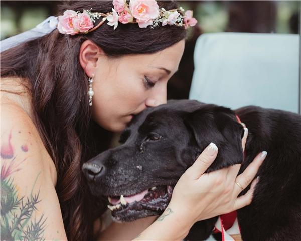 Hình ảnh chú chó Charlie Bear tiễn cô chủ đi lấy chồngkhiến nhiều người không cầm được nước mắt. Được biết chú chó đã gắng gượng sống đến hôn lễ của chủ trước khi trút hơi thở cuối cùng do căn bệnh u não.