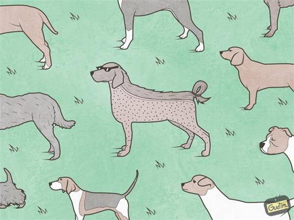 Nếu người có man bun thì chó cũng phải chơi dog bun. Nhưng liệu nó có vui?