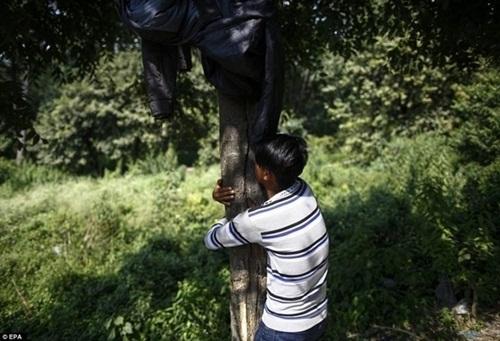 Sử dụng keo trong thời gian dài có thể sinh ra ảo giác. Như đứa trẻ trên đây cứ ôm chặt lấy gốc cây vì tưởng đây là bố mẹ của mình.
