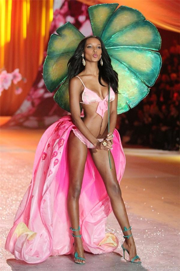 Bên cạnh Victoria's Secret, Jasmine Tookes từng ghi dấu ấn trên hàng trăm sàn diễn lớn nhỏ, trong đó phải kể đến các thương hiệu như: Burberry, Moschino, Dolce & Gabbana, Stella McCartney, Louis Vuitton, Prada... Vị trí vedette lần này trong show diễn của Victoria's Secret chắc chắn sẽ trở thành một cột mốc mới đáng nhớ trong cuộc đời Jasmine.