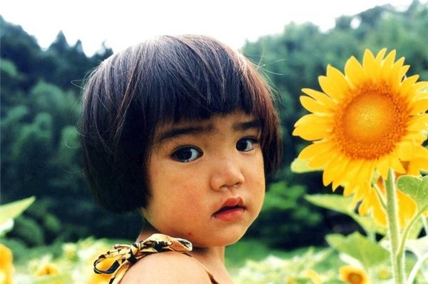 Tan chảy vẻ đẹp trong veo của cô bé trong sách ảnh nổi tiếng nước Nhật