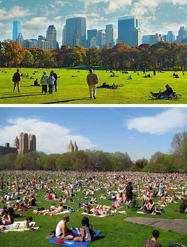 """Một buổi sáng trong lành và """"yên ả"""" ở Central Park, New York là đây. (Ảnh: 9GAG)"""