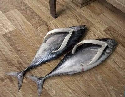 Đôi dép xỏ ngón phong cách cá ngừ.