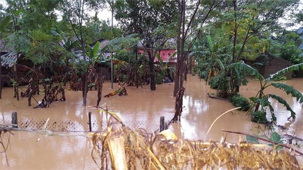 Rơi nước mắt cảnh cả gia đình đứng ăn mì tôm trong ngôi nhà ngập lụt