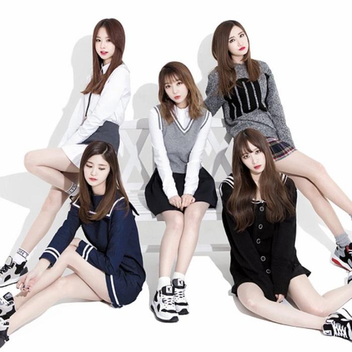 Ít có nhóm nhạc nào có thể sở hữu những cô gái có tài năng ca hát và vũ đạo tương đối đồng đều như EXID. Không những thế, ở EXID có những nét cá tính rất riêng biệt.