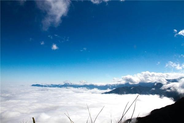 """""""Núi ấp ôm mây, mây ấp núi"""" trên đỉnh Tà Xùa. (Ảnh: Internet)"""