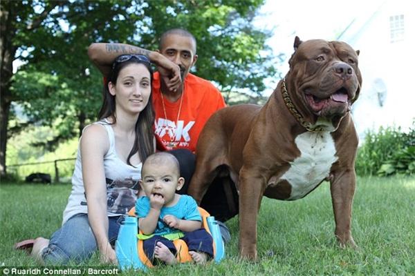Cả Lisa và Marlon đều rất yêu quýHulk và xem nó như một thành viên trong gia đình.