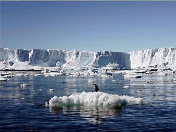 Nam Cực - nơi nguy hiểm nhất cũng là nơi an toànnhất.