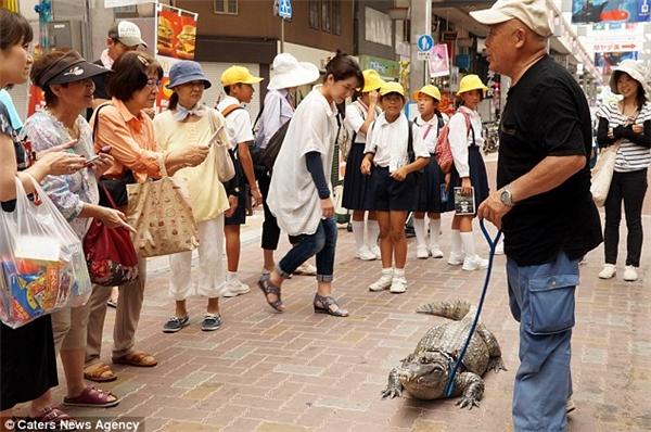 Những người dân chẳng còn mấy ai sợ hãi trước vẻ ngoài xù xì của Caiman vì chúkhá thân thiện và dễ thương.