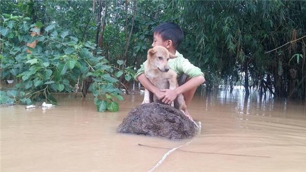 Em bé ôm chặt chú chó của mình. (Ảnh: Hoàng Anh Nguyễn)