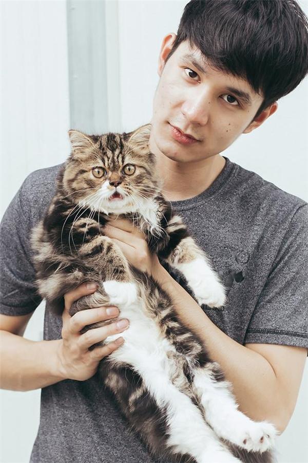 """Chị em sẽ """"ngã quỵ"""" vì anh chàng đẹp trai yêu mèo này mất thôi"""