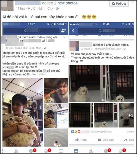 Một người đã nghi ngờ hai chú chó này là một.