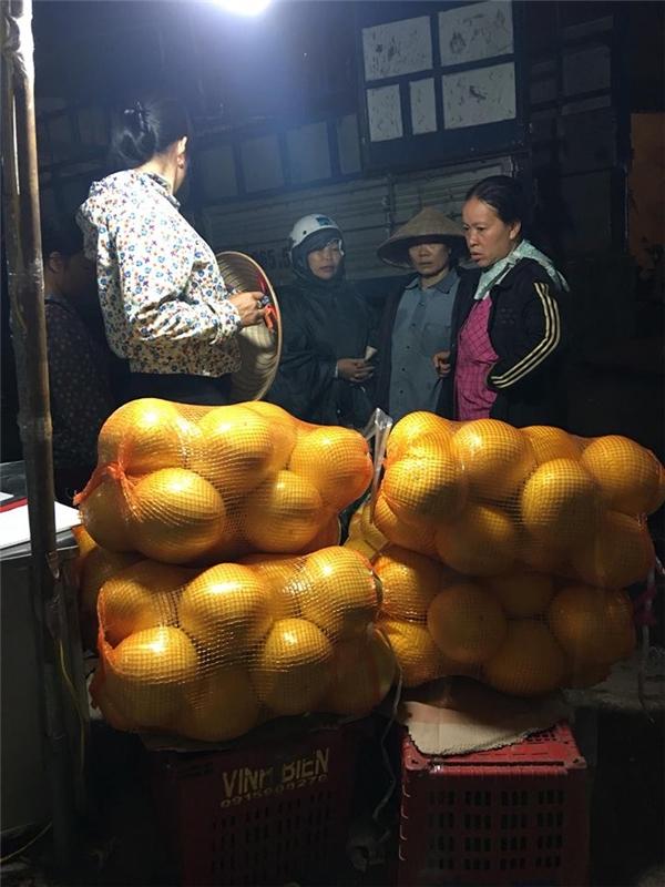 Hết hồn với những loại bưởi độc lạ, có một không hai tại Việt Nam