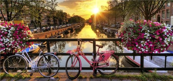 #5 Amsterdam, Hà Lan