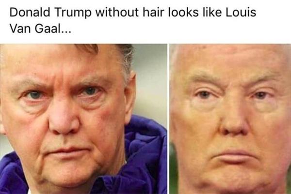 Khuôn mặt củaHLV Louis van Gaal người Hà Lan và ông Donald Trump có nét giống nhau. (Ảnh: internet)
