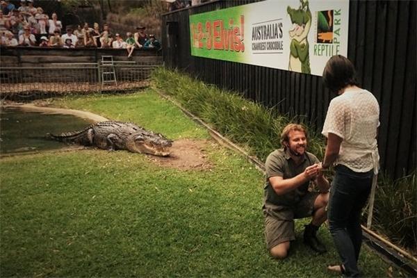 Billy Collett cầu hôn bạn gái 3 năm của mình trong chuồng cá sấu. (Ảnh: Mirror).