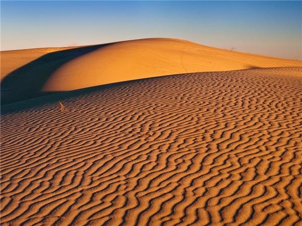 Đồi cát Monahans, Texas cho ngời nhìn cảm giác mênh mông vô tận.Ảnh: Getty.