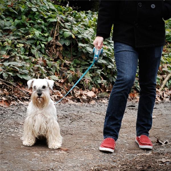 Dây dắt chó thu gọn: Năm 1908, một người phụ nữ nuôi chó ở New York có tên Mary A. Delaney đã phát minh ra sợi dây dắt chó có thể thu gọn vào trong hộp và thay đổi được độ dài, vừa giúp điều khiển được chó, vừa giúp chúng được tự do chạy nhảy.