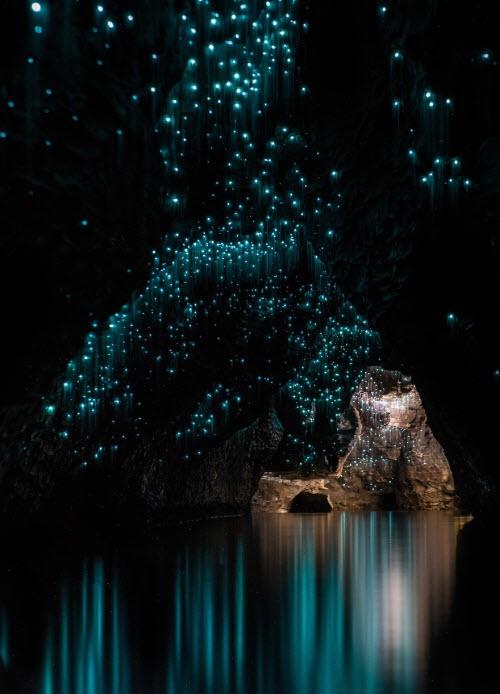 Lạc vào cõi thần tiên với hang đom đóm triệu năm tuổi