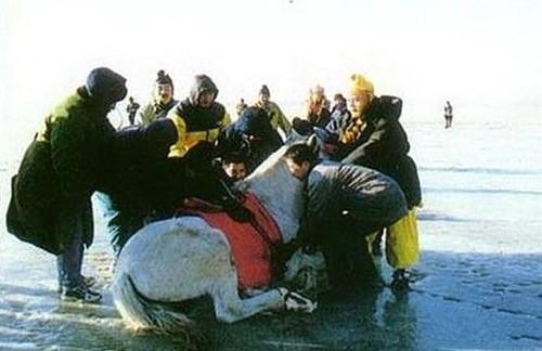 """Theo Đường Tăng đi lấy kinh có Bạch mã. Nhưng lúc đó đoàn phim không tìm được ngựa trắng nên đành phải sử dụng một chú ngựa đen và dùng sơn trắng """"đánh lừa khán giả"""". Mỗi lần quay cảnh dưới nước là một lần khổ vì """"đạo cụ"""" bị trôi đáng kể."""
