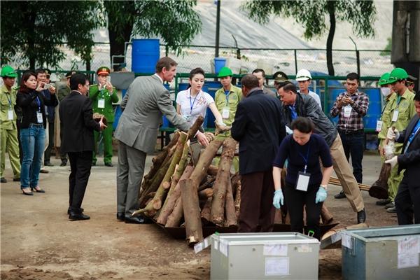 Huyền My giản dị tham dự buổi tiêu hủy ngà voi và sừng tê giác - Tin sao Viet - Tin tuc sao Viet - Scandal sao Viet - Tin tuc cua Sao - Tin cua Sao