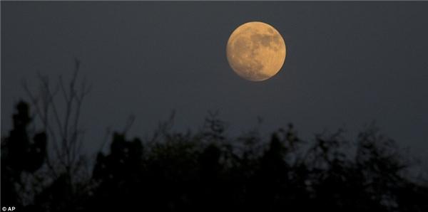 Mặt trăng nhìn từ thung lũng Hefer ở Israel. Vệ tinh của trái đất sẽ chạm tới cận điểm vào lúc 8h52 sáng ngày 14/11 theo giờ chuẩn miền Đông (EST, 20h52 ngày 14/11 giờ Hà Nội) và trăng tròn sẽ đạt đỉnh trong khoảng 2-3 giờ sau đó. (Ảnh: AP)