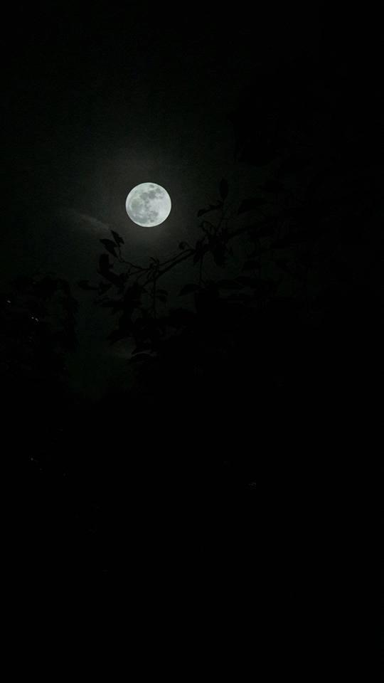 Lung linh loạt ảnh siêu trăng lớn thế kỷ made in Vietnam