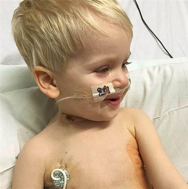 Dylan còn quá bé để phải chịu đựng những nỗi đau lớn về thể xác.