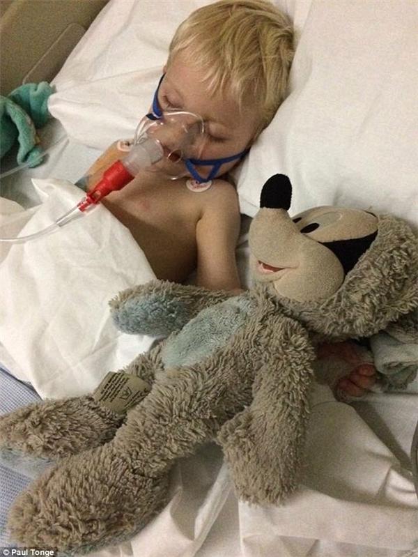 Cậu bé đón Giáng Sinh 2015 trong bệnh viện, cùng với máy thở và chú Mickey bông đã cũ.