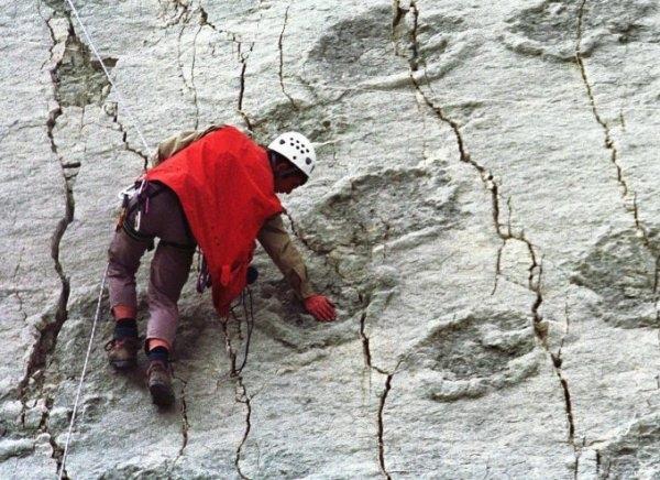 Dấu tích 5000 dấu chân khủng long trên vách đá dựng đứng
