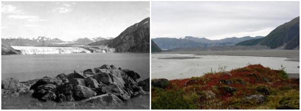Sông băng Carroll, Alaska (08/1906 - 09/2003)