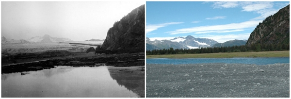 Sông băng Bear, Alaska (07/1909 - 08/2005)