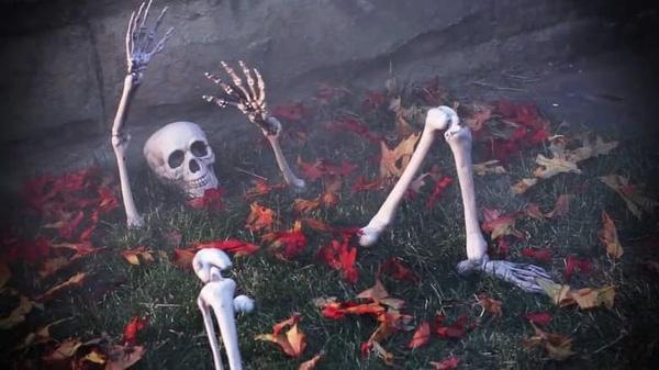Bộ xương người của một phụ nữ Mỹ được tìm thấy ở khoảng sân saunhà của một cặp vợ chồng người Canada.