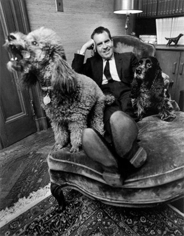 Tổng thống Nixon chụp ảnh bên hai cún cưng.