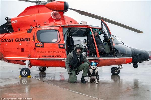 K9 Pipervà các phi công trong một ngày mưa. (Ảnh: Internet)