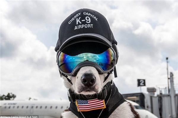 Ngả mũ trước nhân viên đường băng cool ngầu chất chơi nhất thế giới