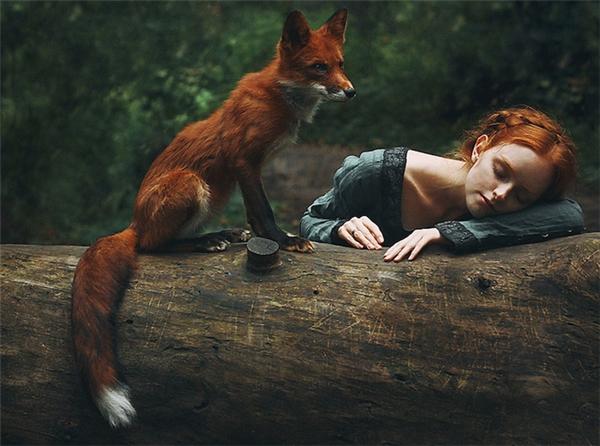 """Chú cáo lửa là một """"mẫu ảnh"""" thường xuyên góp mặt trong các shoot hình của Alexandra."""