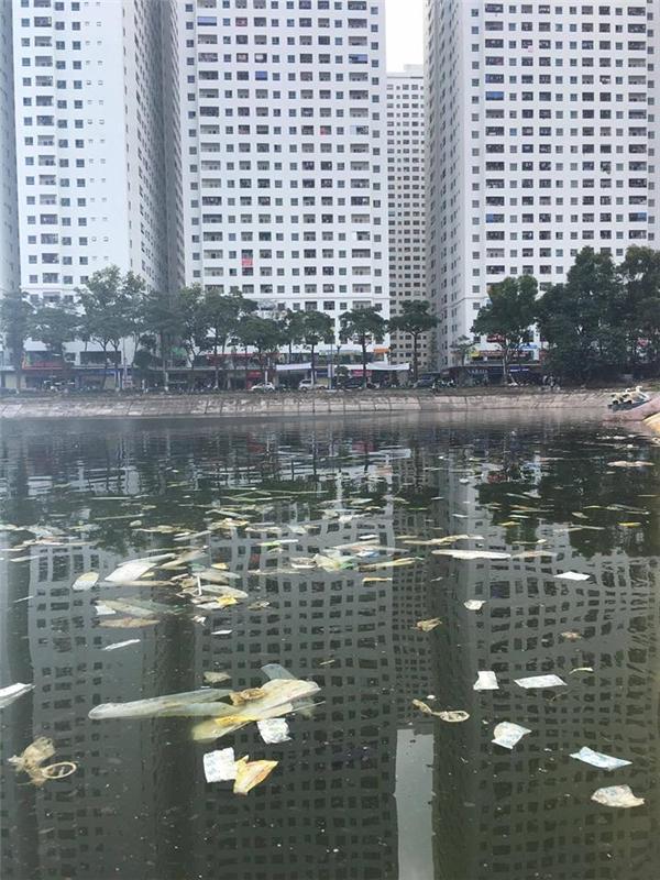 ÔngBenjamin James Park- chủ nhân của những bức ảnh cho biết đống rác thải kéo dài khoảng 60m theo bờ hồ.