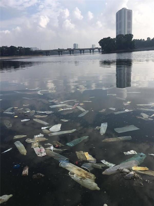 Loạt rác thải gây ô nhiễm và khiến mặt hồ Linh Đàm trông mất mĩ quan đô thị đến thảm hại.